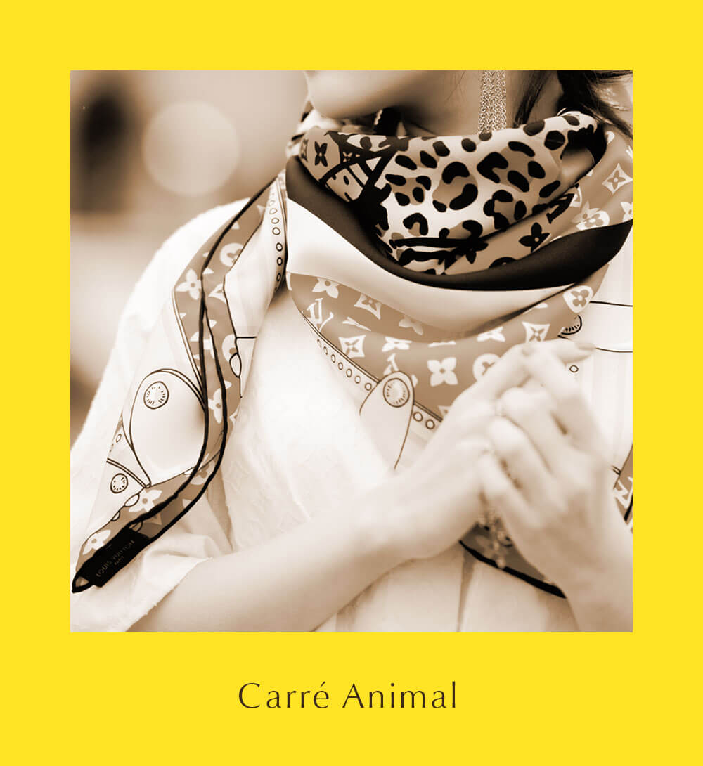 Carré Animal